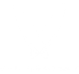 Phil Lihotzky - Content Creator